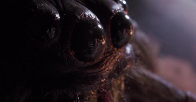 arachnophobia05