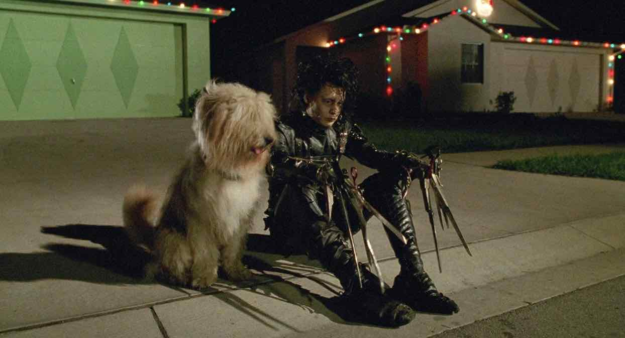 edwardscissorhands11